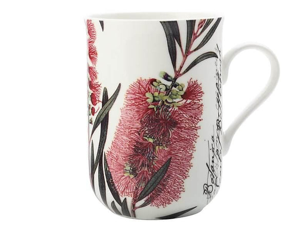 Maxwell & Williams Royal Botanic Garden - Botanic Mug Bottlebrush 300ML