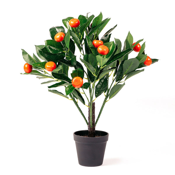 Botanica Artificial Orange Tree 50cm
