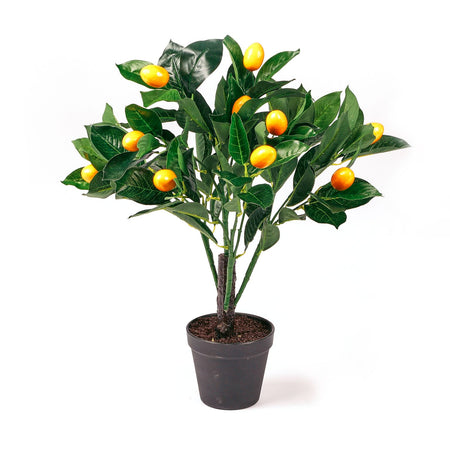 Botanica Artificial Lemon Tree 50cm