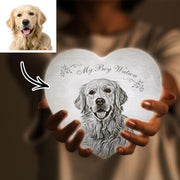 Engraved Moon Lamp Custom 3D Lamp Moon Heart Shape For Pets