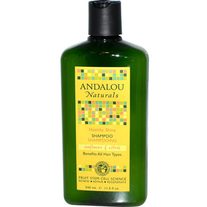 Andalou Naturals Healthy Shine Sunflower & Citrus Shampoo (1x11.5 Oz)