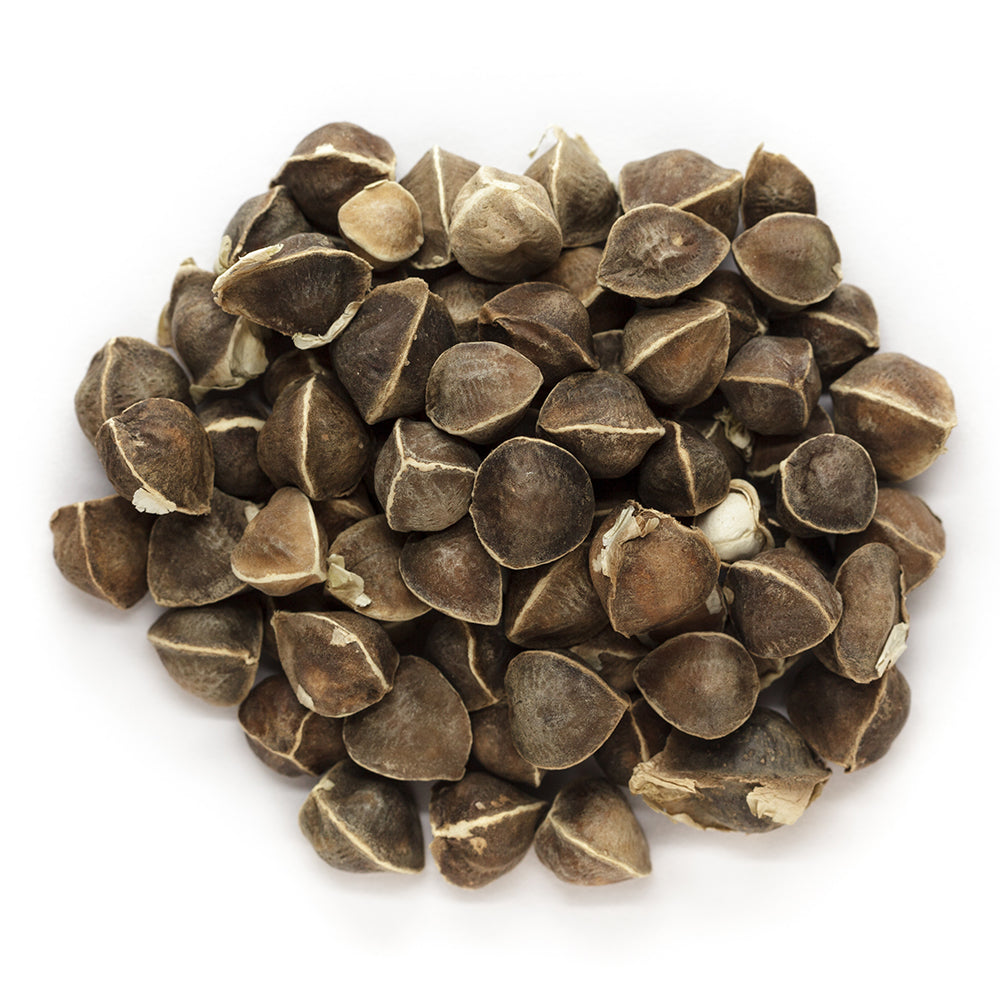 organic moringa seeds manufacturer supplier
