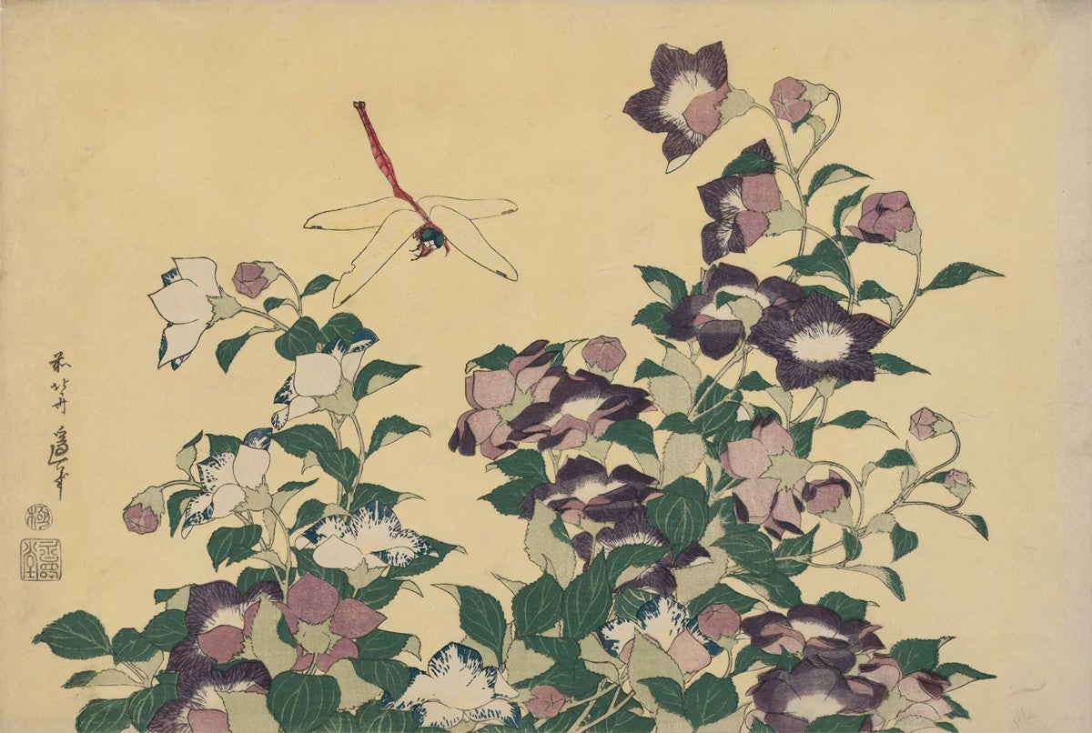 Bellflower and Dragonfly (1833)