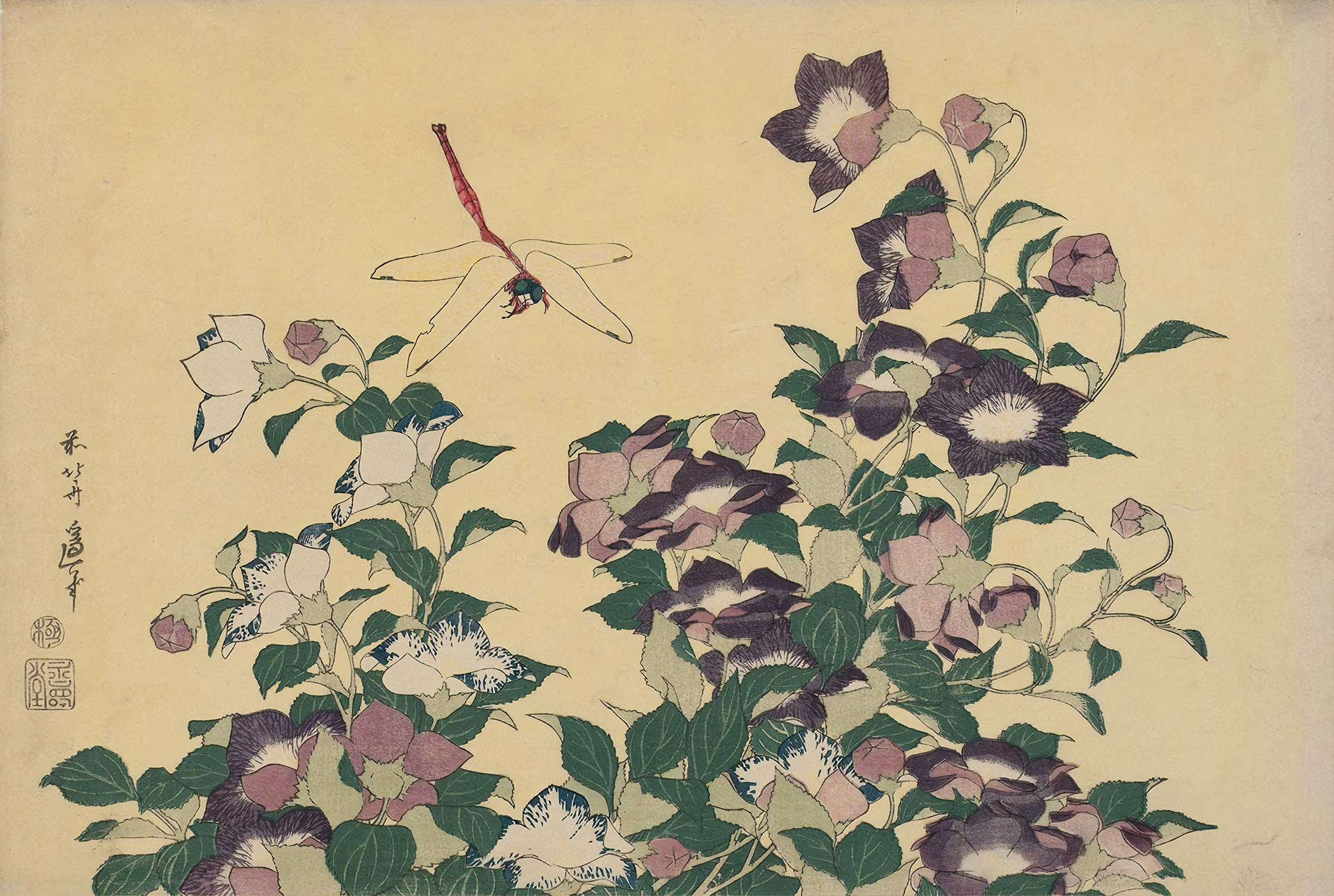 Bellflower and Dragonfly (1833) by Hokusai
