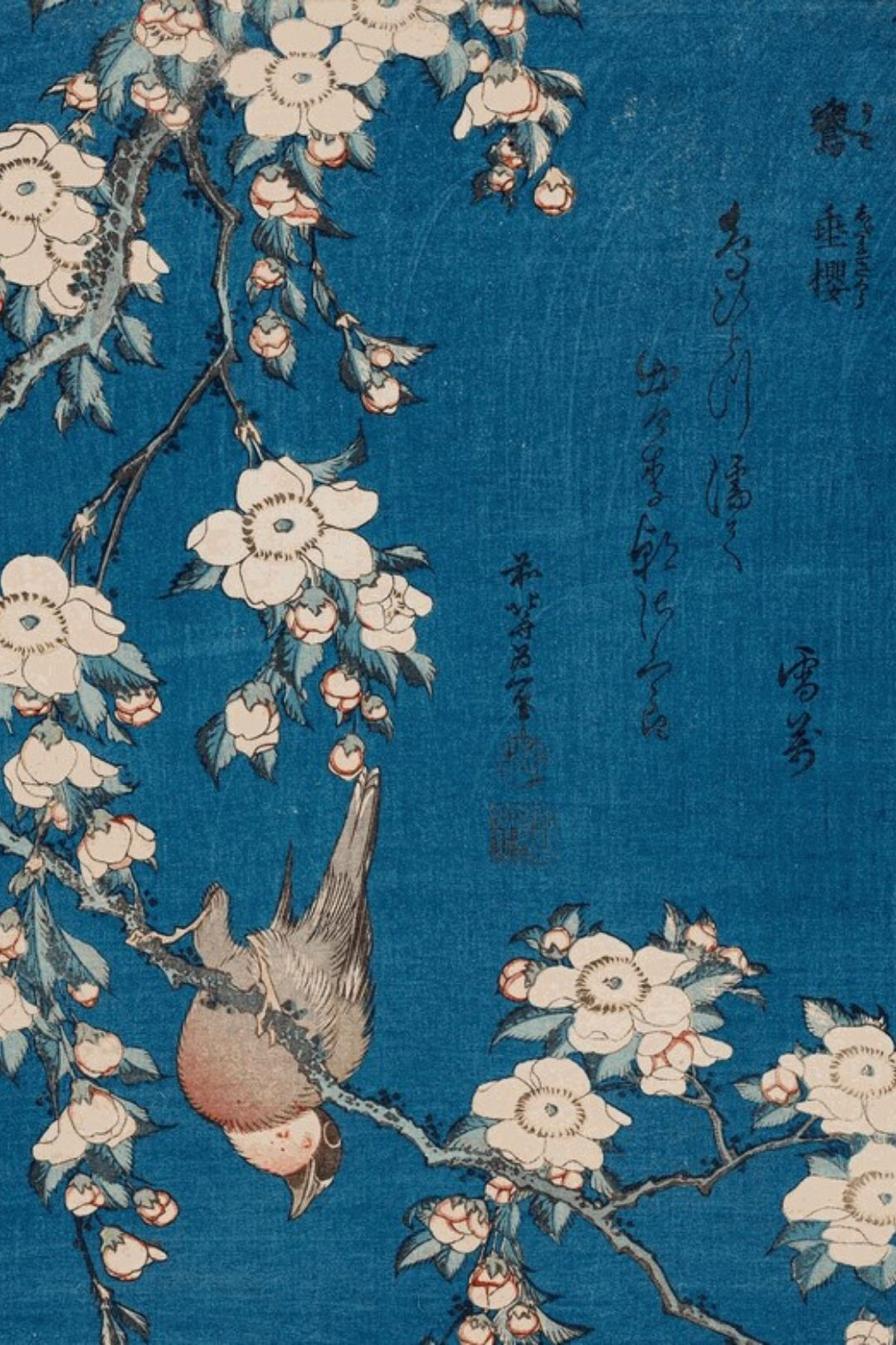 Weeping Cherry and Bullfinch (1834) by Hokusai
