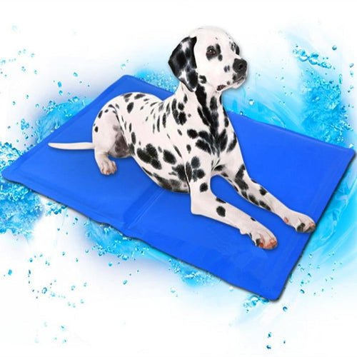 Cool Mat for Cool Dogs and Cats