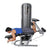 InFlight Multi Prone Leg Ext / Leg Curl Machine