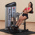 Body Solid Pro Club Line Series II Ab and Back Machine