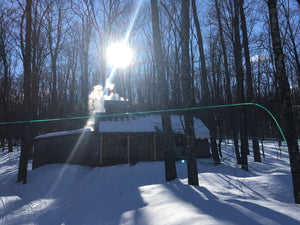 Start of the 2020 sugaring season