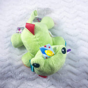 Froggie Paci Pal and Clip