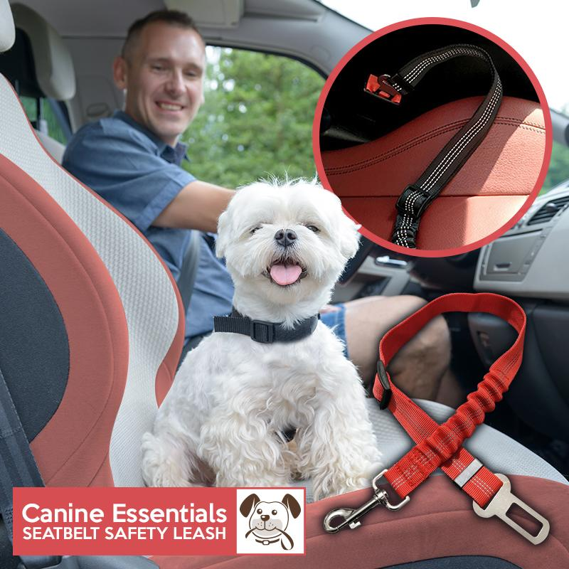 Canine Essentials – Seatbelt Safety Leash