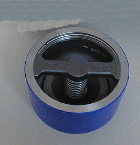 Check Valve RK41 PN16 NW125 GG L90 D184
