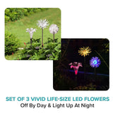 Decorative LED Solar Garden Lights