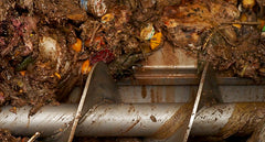 Liquid Food Waste Collections