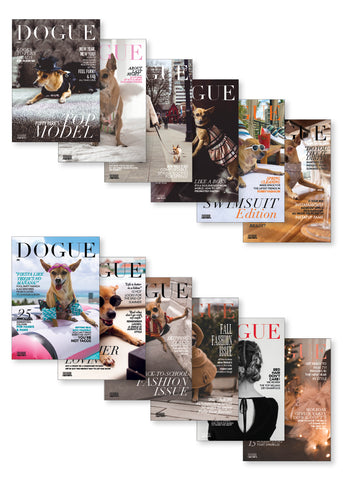 DOGUE - 12 Card Set