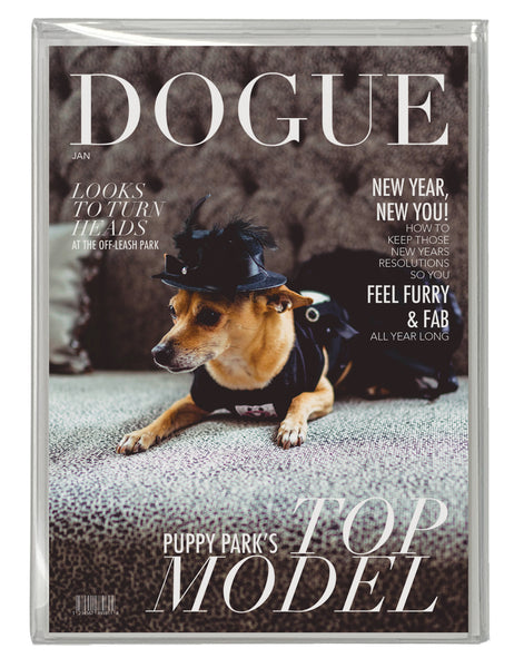 DOGUE BOX SET