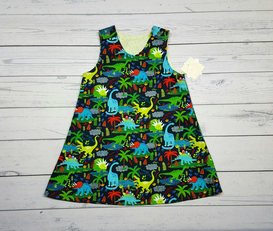 Dniosaurs and Paisley Reversible Dress