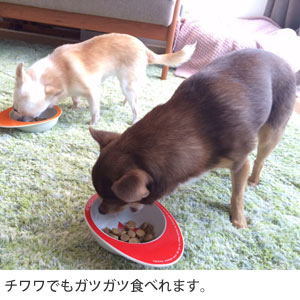 Naturally Fresh チキン&ダック DOG