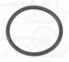 Chris King O-Ring - Axle Retainer Sleeve - R45 Campagnolo