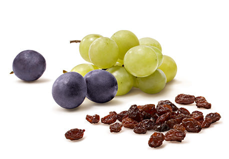 Grapes and Raisins