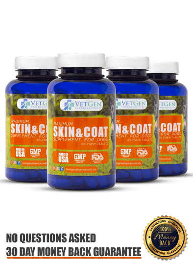 best dog skin and coat supplement