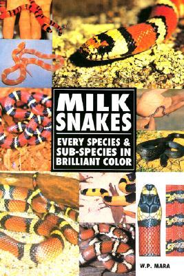 Milksnakes: every species & sub-species in brilliant color by Wil Mara
