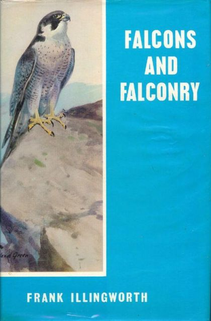 Falcons And Falconry by Frank Illingworth