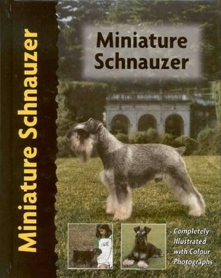 Miniature Schnauzer (Pet love) by Lee Sheehan