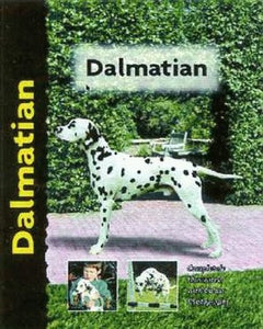 Dalmatian (Pet love) by Frances Camp
