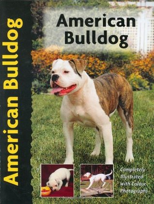 American Bulldog (Pet Love) by Abe Fishman
