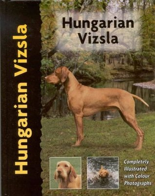 Hungarian Vizsla (Pet love) by Robert White