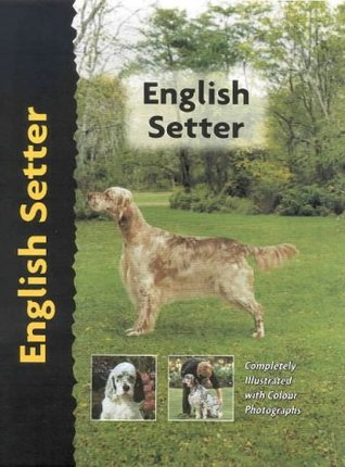 English Setter (Comprehensive Owner's Guide) by Juliette Cunliffe