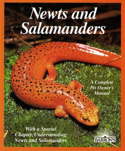 Newts and Salamanders by Frank Indiviglio