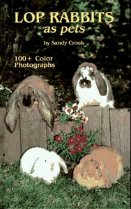 Lop Rabbits As Pets By Sandy Crook