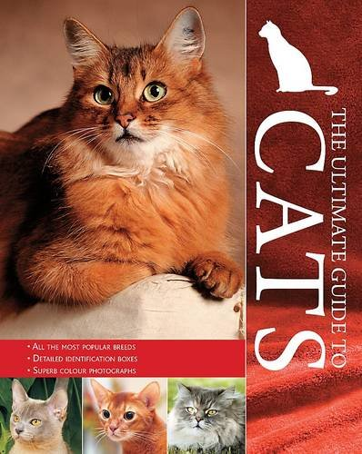 The Ultimate Guide To Cats Candida Frith-Macdonald