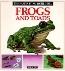 The Fascinating World of Frogs and Toads by Maria Ángels Julivert