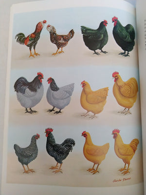 The Poultry Colour Guide by Jospeh Batty New Edition 2001