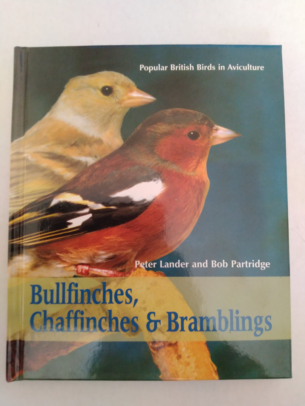 Bullfinches, Chaffinches and Bramblings: Popular British Birds in Aviculture by Peter Lander, Bob Partridge
