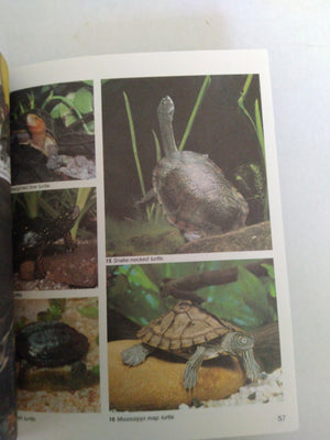 Turtles: A Complete Pet Owner's Guide by Hartmut Wilke, Rita and Robert Kimber