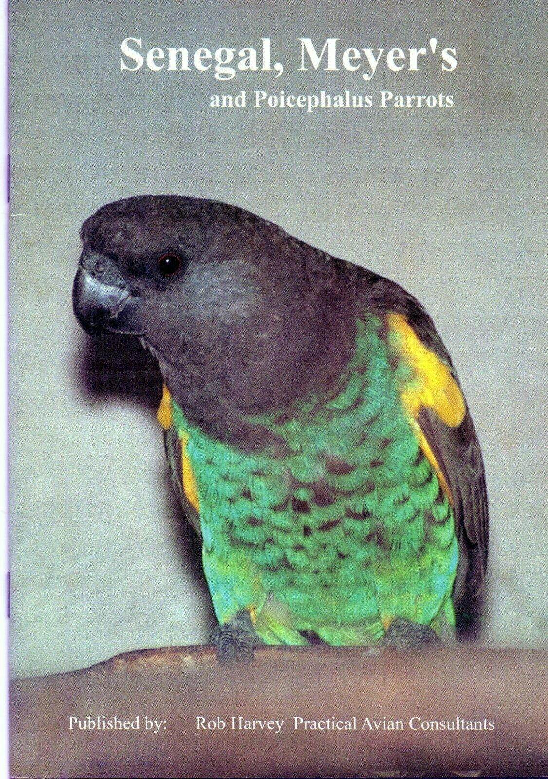 Senegal, Meyer's And Poicephalus Parrots Rob Harvey And Practical Avian Consultants