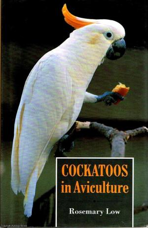 Cockatoos in Aviculture by Rosemary Low
