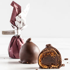 Rabitos Royale: Spanish Chocolate Figs with Brandy_La Higuera_Chocolate Specialties