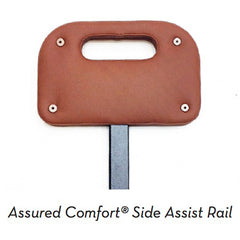 Assist Rail