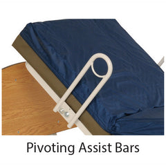 Pivoting Assist Bars