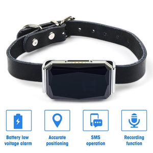Dog GPS Gemstone Tracker
