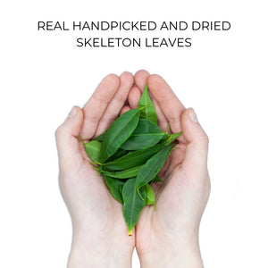 Organic Case - Skeleton Leaves