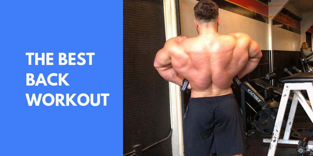 The Best Back Workout