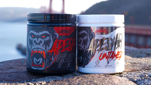 Which Top Pre Workout is Best for You?