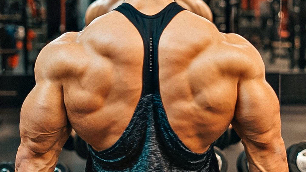 The Best Lat Workouts