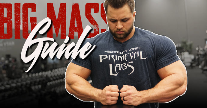 2019 Big Mass Transformation Guide